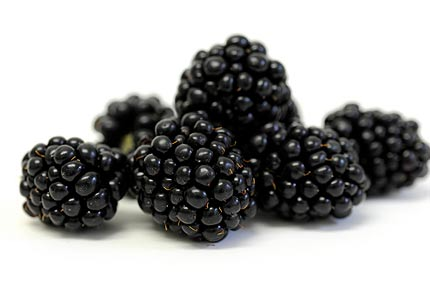 blackberries430x300